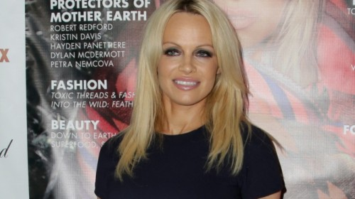 'Porn is for losers & a public hazard' – Pamela Anderson on how pornography addiction destroys relationships