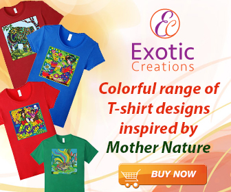 Exotic creations t-shirts